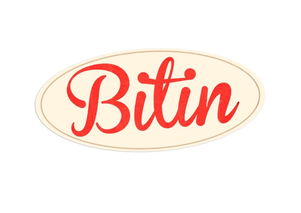 """Logo da nossa marca """"fake"""" Bitin, feito pela designer Paola Charão"""